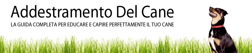 Addestramento Cani Online Ebook e Guide Per Educare il Cane